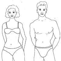 Строение тела мужчины и женщины