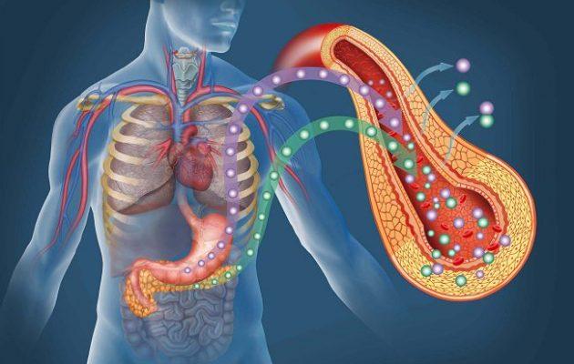 Гормоны поджелудочной железы: виды, норма и лечение