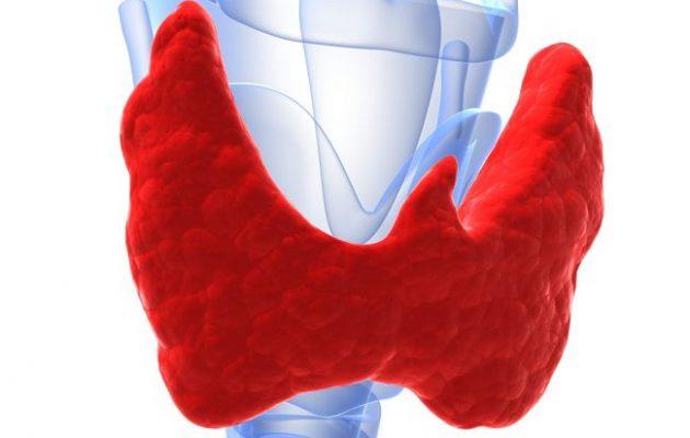 Узлы щитовидной железы: причины, симптомы, лечение